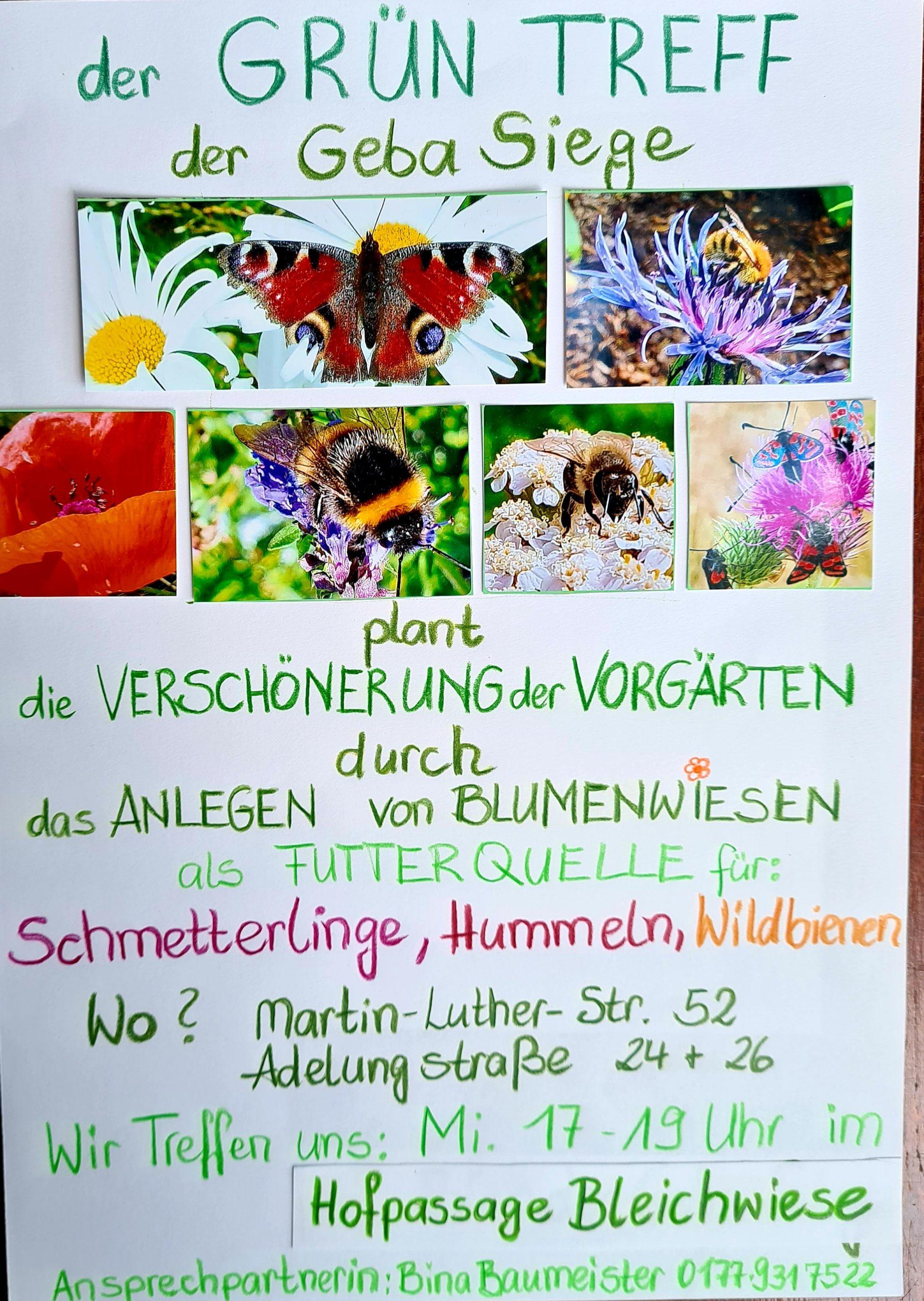 "Grün Treff Aktion ""Winter Wunder"""